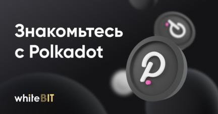 Что такое Polkadot